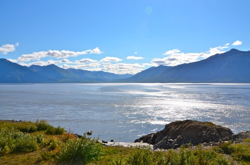 © Nicole Geils Bore Tide Tour