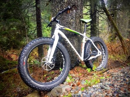 XL Bike