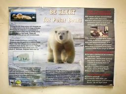 Polar Bear Aware