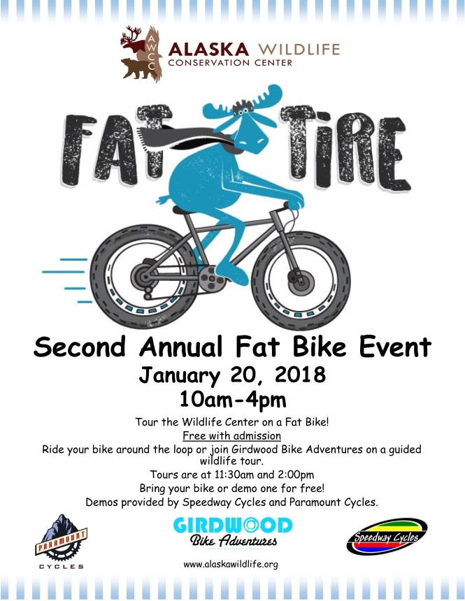AWCC Fat Bike Poster 2018