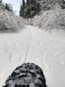 Fat Biking the Historic Iditarod Trail