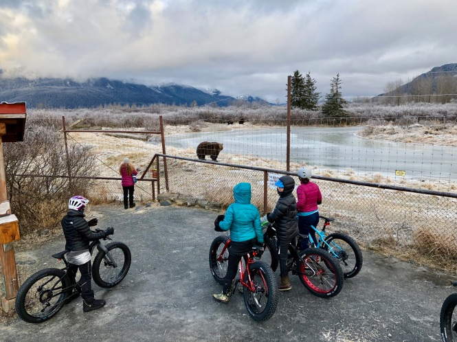 AWCC Fat Bike Event 2018 © GBA Nicole Geils